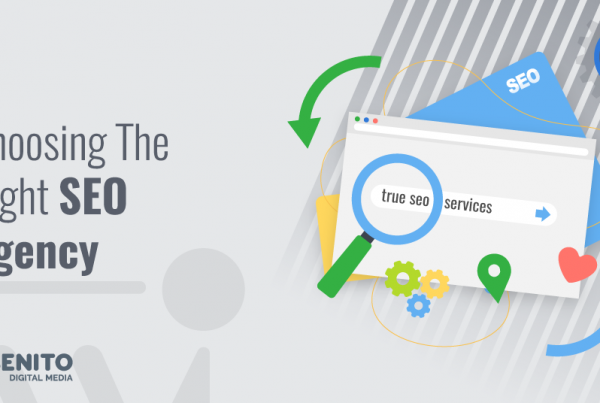 Webenito Blog - Choosing the Right SEO Agency for Startups